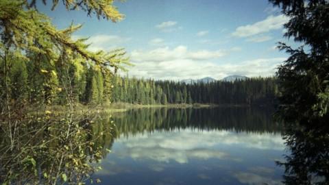 Montanalake